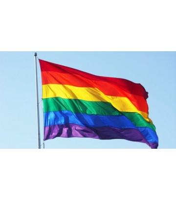 Grand Drapeau Rainbow (Rainbow Flag)