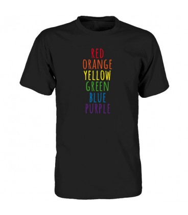 T shirt US Gay Colors