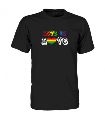 Tee shirt gay Love is Love