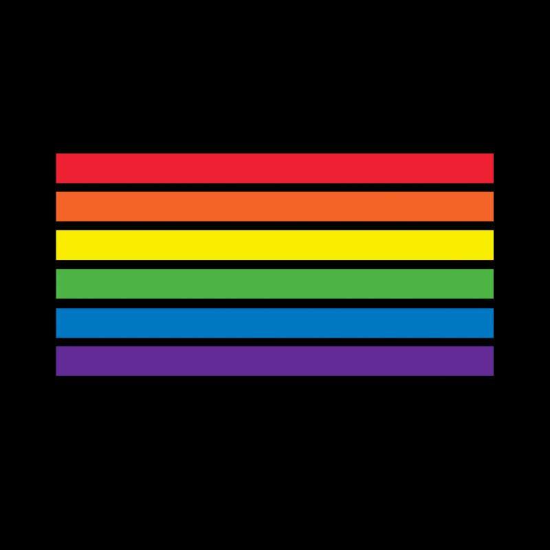 T shirt Drapeau LGBT