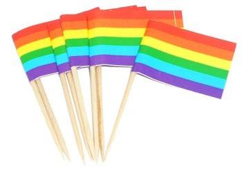 Bâtons cure-dent drapeau rainbow